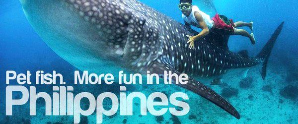 more-fun-in-the-philippines